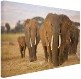 Olifanten familie Canvas 30x20 cm - Foto print op Canvas schilderij (Wanddecoratie)
