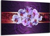 Canvas schilderij Orchidee   Paars   140x90cm 1Luik