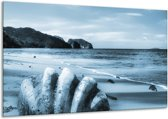 Glas schilderij Schelp, Strand | Blauw | 120x70cm 1Luik | Foto print op Glas |  F006521
