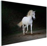 FotoCadeau.nl - Wit paard foto Glas 90x60 cm - Foto print op Glas (Plexiglas wanddecoratie)