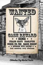 Chihuahua W Glasses Dog Wanted Poster