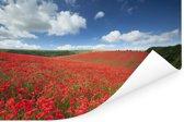 Veld van klaprozen in het Nationaal park South Downs in Engeland Poster 180x120 cm - Foto print op Poster (wanddecoratie woonkamer / slaapkamer) XXL / Groot formaat!