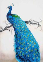 Needle Art Blue Peacock Diamond Dotz 60x84 cm