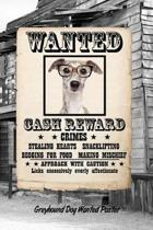 Greyhound W Glasses Dog Wanted Poster
