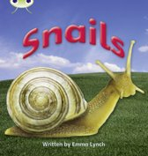 Phonics Bug Non-fiction Set 12 Snails