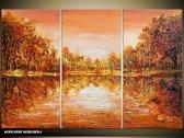 Acryl Schilderij Natuur | Bruin, Oranje | 120x80cm 3Luik Handgeschilderd
