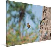Vliegende groene bijeneter Canvas 90x60 cm - Foto print op Canvas schilderij (Wanddecoratie woonkamer / slaapkamer)