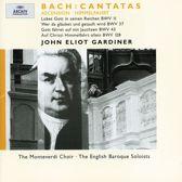 Bach: Cantatas BWV 11, 37, 43, 128 / Gardiner et al