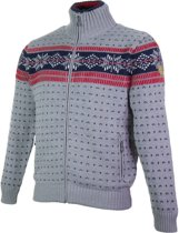 Campagnolo Knitted Pullover Sporttrui - Maat XL  - Mannen - grijs/blauw/wit/rood