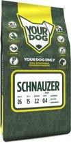 Yourdog Middelslagschnauzer Pup - 3 KG