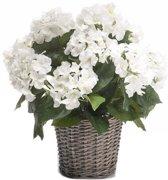 Kunstplant witte Hortensia in mand 45 cm - kunstplant