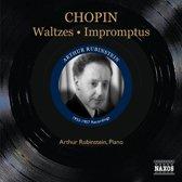 Chopin: Waltzes/Impromptus