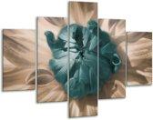 Glasschilderij Bloem | Blauw, Wit, Grijs | 100x70cm 5Luik | Foto print op Glas |  F002548