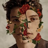 Shawn Mendes: The Album