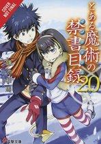 A Certain Magical Index, Vol. 20 (Light Novel)