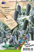 Sluis Garden - Mini Komkommer Hopeline F1