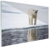 Ijsbeer bij het water Glas 120x80 cm - Foto print op Glas (Plexiglas wanddecoratie)