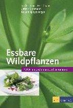 Essbare Wildpflanzen Ausgabe