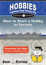 How to Start a Hobby in Ferrets