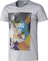 Adidas T-shirt B89613, Mannen, Grijs, T-shirt maat: XS EU