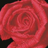 DD5.039 Diamond Dotz® - 30,5x30,5cm Rose Dew (#DD1904)