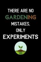There Are No Gardening Mistakes