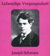 Joseph Schwarz - Arien