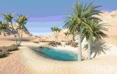 DP® Diamond Painting pakket volwassenen - Afbeelding: Oase - 60 x 90 cm volledige bedekking, vierkante steentjes - 100% Nederlandse productie! - Cat.: Stad & Land