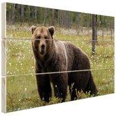 Bruine beer in het bos Hout 80x60 cm - Foto print op Hout (Wanddecoratie)