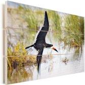 Zwarte Schuimspaan tijdens de vlucht tegen een achtergrond van water en gras Vurenhout met planken 40x30 cm - klein - Foto print op Hout (Wanddecoratie)