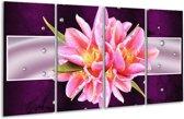 Glasschilderij Modern | Paars, Roze | 160x80cm 4Luik | Foto print op Glas |  F005834