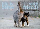 "Yogi & Yogini naturals Ansichtkaart ""Life is better.."" (15x10,5cm)"