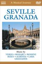 Seville: A Musical Journey