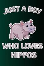 Just a Boy Who Loves Hippos