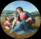 Raphael : Alba Madonna (1510) Canvas Print