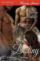 Destiny [Healing Springs 1] (Siren Publishing Menage Amour)