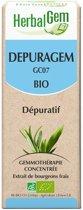 Depuragem - Bevordert de eliminatie van toxines - Herbalgem