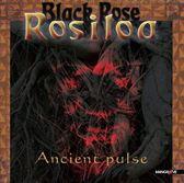 Ancient Pulse