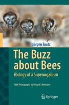 The Buzz about Bees