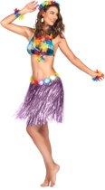 Paars hawaiiaanse rok voor volwassenen - Volwassenen kostuums