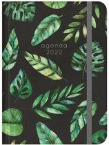 Hobbit agenda soft pocket A6 bladeren D6 jaaragenda 2020 (klein formaat A6)