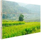 Rijstvelden in Azie foto Hout 160x120 cm - Foto print op Hout (Wanddecoratie) XXL / Groot formaat!