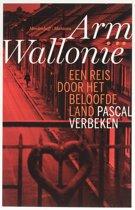 Arm Wallonië