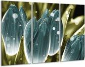Canvas schilderij Tulp | Blauw, Grijs | 120x80cm 3Luik