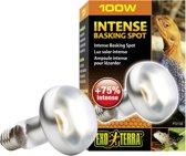 Exo Terra Basking  - Spot Lamp - Terrarium Verlichting - 100W