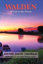 Walden (Or Life in the Woods) (Illustrated Edition)