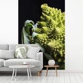 Fotobehang vinyl - Romanesco tegen een zwarte achtergrond breedte 270 cm x hoogte 400 cm - Foto print op behang (in 7 formaten beschikbaar)