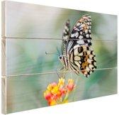 Pages vlinder op bloem Hout 60x40 cm - Foto print op Hout (Wanddecoratie)