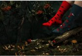 Toffe Sokken - Gekke Sokken - Leuke Sokken - Dots & Bugs - Maat: 35 t/m 38