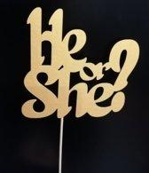 He or She? - Papieren taarttopper matgoud - Genderreveal